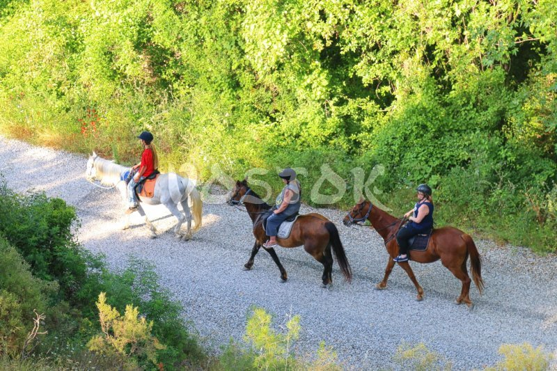 Relaxing and peaceful horse riding near Yaniklar village
