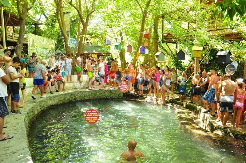 Jump to the cold water win a drink at Yakapark trout farm - Patara Jeep Safari