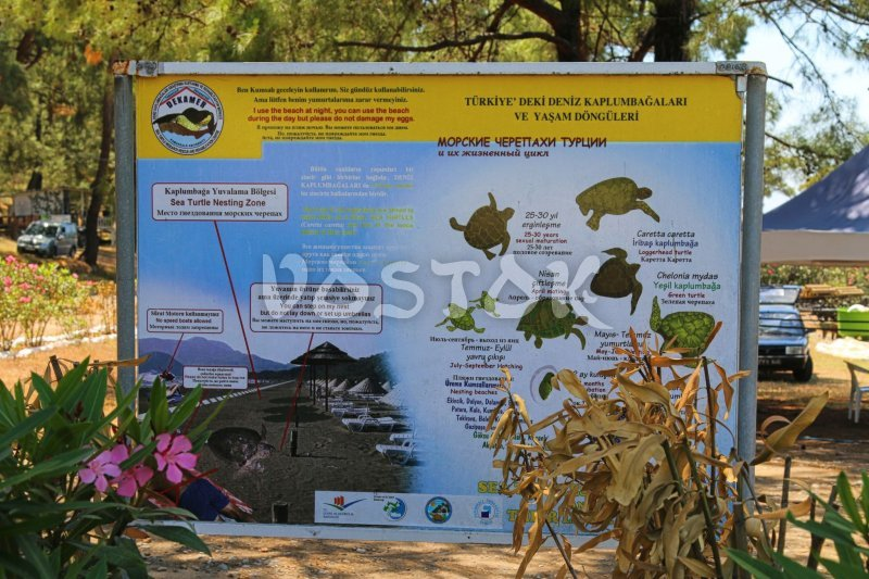 Information board in Iztuzu Turtle Hospital