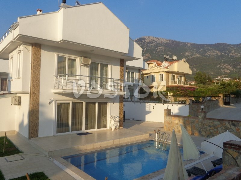 Private pool - Pine Villa in Ovacik Hisaronu