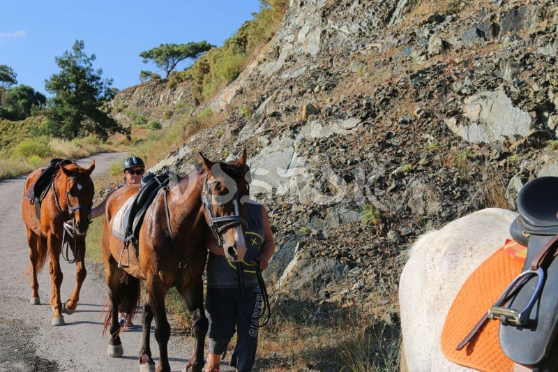 On the way back to ISAM horse ranch in Yaniklar - Fethiye Horse Riding