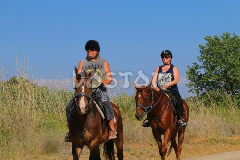 Desperado ranch Fethiye does great job taking care of their horses