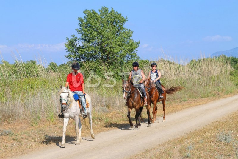 Small groups horseback riding from Desperado ranch Fethiye in Yaniklar
