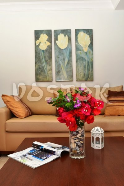Comfortable sofa in lounge room - Saros Apartments in Calis Fethiye