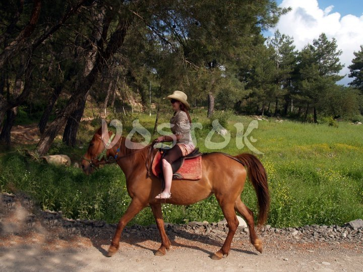 Better to have helmet bit she said she is cow girl so only hat is good for her - horseback riding Fethiye